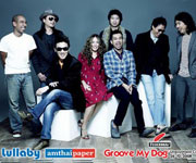 Groove My Dog Unplugged Concert